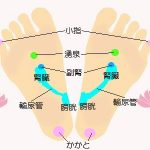 腎臓の足裏反射区と注意点
